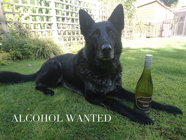 Alcohol wanted